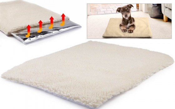 soft_heating_pet_bed_800x500_main_1453309213